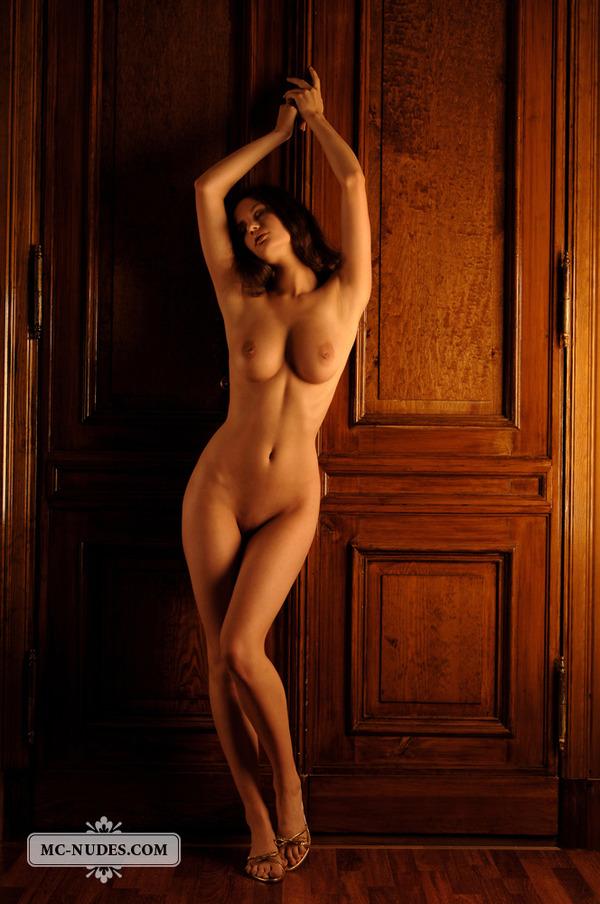 Фото голые красивые женские фигуры 40043 фотография